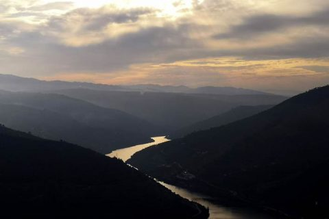 Wine Tour at Douro Valley